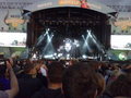 The Hives live at Highfield 2014.png