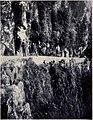 The Levada de Joao Gomes, MON 1909.jpg