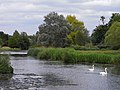 The River Loddon, Stratfield Saye - geograph.org.uk - 1422927.jpg