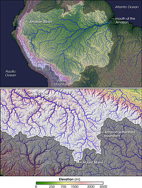 what is the amazon river basin