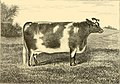 The breeds of live stock, and the principles of heredity (1887) (14594545260).jpg