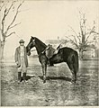 The photographic history of the Civil War - thousands of scenes photographed 1861-65, with text by many special authorities (1911) (14759769191).jpg