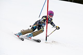 Slalom skiing alpine skiing discipline