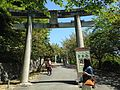 Toriis on sando for Okunomiya 8 Shrines in Miyajidake Shrine.JPG