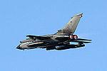 Tornado IDS (5167337877).jpg