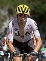 Tour de France 2017, landa (35358387033) (cropped).jpg