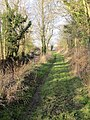 Towpath towards the road - geograph.org.uk - 1638016.jpg
