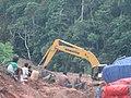 Trans Papua Manokwari - Teluk Bintuni.jpg