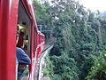 Trem do Corcovado -c.jpg