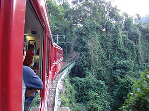 Tijuca Forest - A train runs through the forest en route to the Christ the Redeemer statue atop Corcovado.