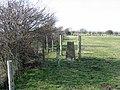 Triangulation pillar, Throckmorton - geograph.org.uk - 374495.jpg