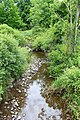Trout Brook 1.jpg