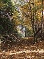 Tuori autunno.JPG
