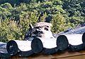 Turtoise on the Roof of Puji Temple 普濟寺屋頂吉龜 - panoramio.jpg