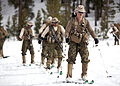 U.S. Marine Corps Lance Cpl. Justin Hoppis skis with his fellow Marines during ski tour training conducted at the Mountain Warfare Training Center in Bridgeport, Calif., on April 3, 2013 130403-M-NP085-002.jpg
