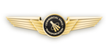 US - FAA Astronaut Wings version 2.png