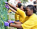 US Navy 091030-N-9094S-462 Culinary Specialist 2nd Class Kalicia Butler, right, Yeoman 2nd Class Melinda Ocampo, and Information Systems Technician 2nd Class Calithea Williams, assigned to the amphibious command ship USS Blue R.jpg