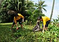 US Navy 110924-N-BT122-473 Sailors pick up trash during a community service project at the War in the Pacific National Historical Park.jpg