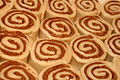 Uncooked cinnamon roll buns, March 2010.jpg