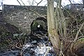 Under the A9 - geograph.org.uk - 666925.jpg