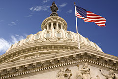 United States Capitol Dome and Flag.jpg