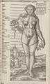 Ur boken Archidoxa, 1575 - Skoklosters slott - 102639.tif