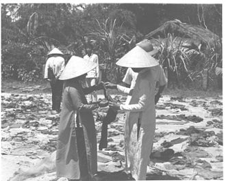 Massacre at Huế - Searching – Bits of tattered clothing, sandals and slippers are examined by South Vietnamese women who lost relatives in the 1968 Tet massacre. The latest mass grave discovered in Huế yielded remains of 250 victims