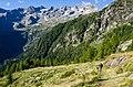 Val Masino (83560981).jpeg