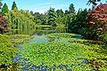 VanDusen Botanical Garden 3.jpg