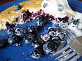 Vegan Blueberry Griddle Cake (5005329172).jpg