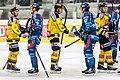 Vienna Capitals vs Fehervar AV19 -200-23.jpg