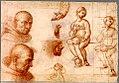 Vierge aux saints, dessin Vierge.jpg
