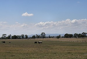 Carrum Downs, Victoria - Views of the Dandenong Ranges from Carrum Downs.