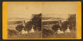 View of Kelly's bluff, Dubuque, Iowa, by Root, Samuel, 1819-1889.png