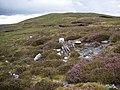 View to Bersa Hill - geograph.org.uk - 1452633.jpg