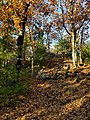 View up the hill toward Tippling Rock in Sudbury Massachusetts near Nobscot Hill Reservation.jpg