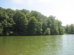 Village Creek State Park Wynne AR 07.jpg