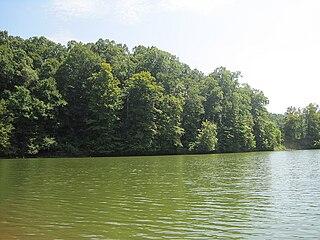 Village Creek State Park (Arkansas)