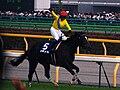 Vodka(horse) 20070608a.jpg