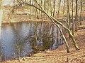 Volkspark Rehberge - Sperlingsee - geo.hlipp.de - 34998.jpg