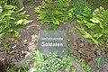 Waldfriedhof Schöneiche - Grab unbekannter Soldaten 2.JPG