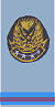 Warrant officer (WO).jpg