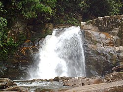 Waterfall in Sinharaja.JPG