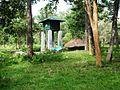 Wayanad Wildlife Sanctuary, Muthanga Range - panoramio (9).jpg