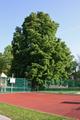 Weilburgpark I.png