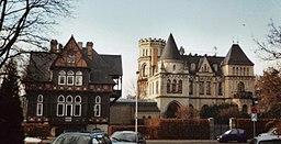 Weinberg in Hildesheim