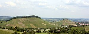 Württemberg (wine region) - Vineyards Schemelsberg and Burgberg, situated on hills in the village Weinsberg close to Heilbronn