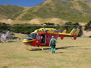 Wellington Westpac Rescue Helicopter - BK117 - Flickr - 111 Emergency (20).jpg