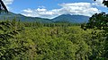 Wildwood Recreation Site, Welches, OR.jpg