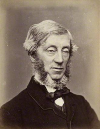William Courtenay, 11th Earl of Devon - William Courtenay, 11th Earl of Devon, albumen print, 1870s by John Watkins, National Portrait Gallery, London